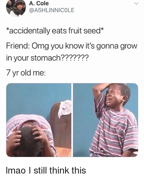 Lmao, Omg, and Relatable: A. Cole  A5HLINNICOLE  *accidentally eats fruit seed*  Friend: Omg you know it's gonna grow  in your stomach???????  7 yr old me: lmao I still think this