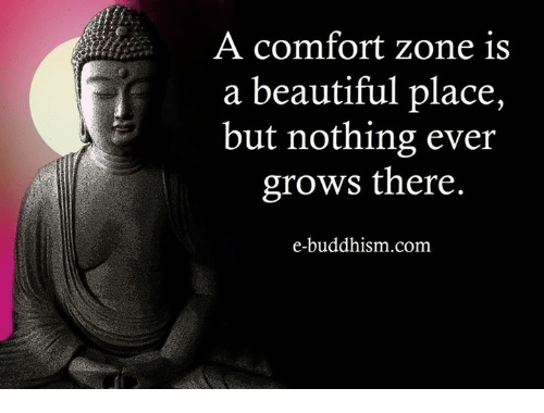 beautiful places: A comfort zone is  a beautiful place,  but nothing ever  grows there.  e-buddhism com