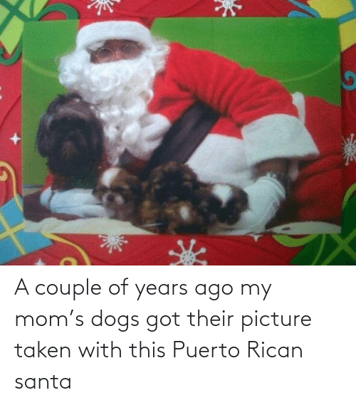 puerto rican: A couple of years ago my mom's dogs got their picture taken with this Puerto Rican santa
