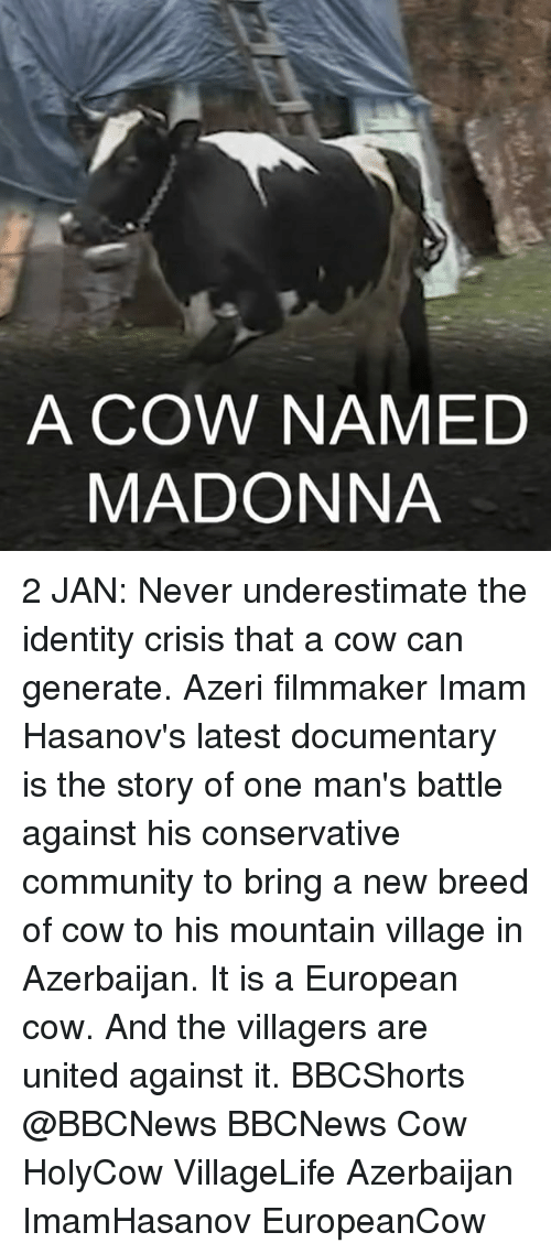 Madonna, Memes, and The Village: A COW NAMED  MADONNA 2 JAN: Never underestimate the identity crisis that a cow can generate. Azeri filmmaker Imam Hasanov's latest documentary is the story of one man's battle against his conservative community to bring a new breed of cow to his mountain village in Azerbaijan. It is a European cow. And the villagers are united against it. BBCShorts @BBCNews BBCNews Cow HolyCow VillageLife Azerbaijan ImamHasanov EuropeanCow