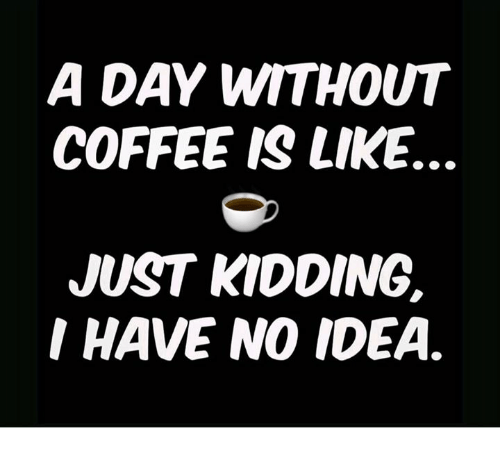 Without Coffee: A DAY WITHOUT  COFFEE IS LIKE.  JUST KIDDING.  I HAVE NO IDEA.