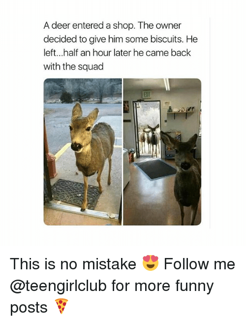 Deer, Funny, and Squad: A deer entered a shop. The owner  decided to give him some biscuits. He  left...half an hour later he came back  with the squad This is no mistake 😍 Follow me @teengirlclub for more funny posts 🍕