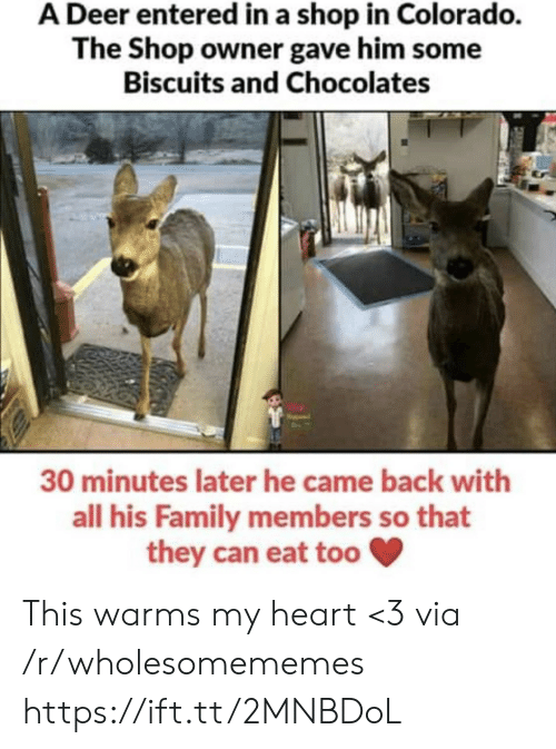 came back: A Deer entered in a shop in Colorado.  The Shop owner gave him some  Biscuits and Chocolates  30 minutes later he came back with  all his Family members so that  they can eat too This warms my heart <3 via /r/wholesomememes https://ift.tt/2MNBDoL