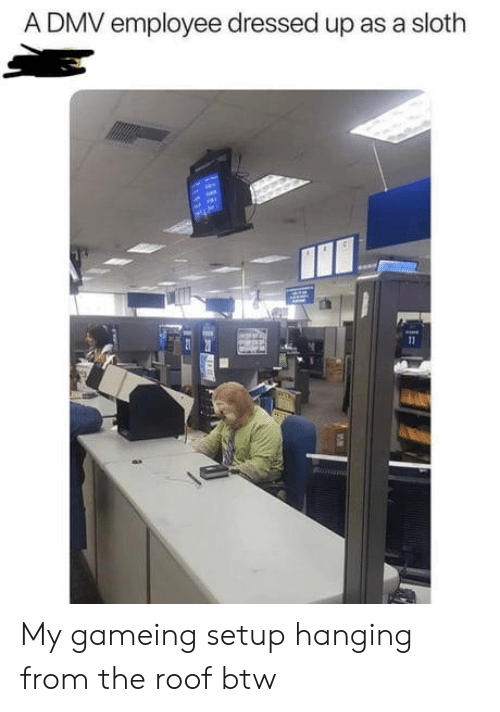 DMV: A DMV employee dressed up as a sloth My gameing setup hanging from the roof btw