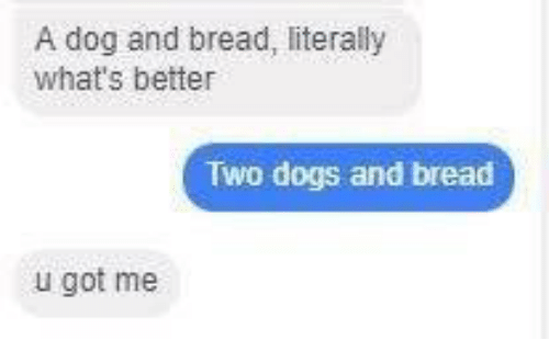dogged: A dog and bread, literally  what's better  Two dogs and bread  u got me
