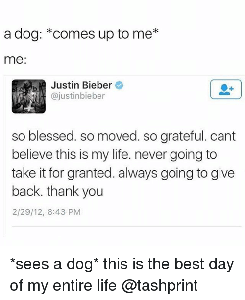So Blessed So Moved: a dog: comes up to me*  me:  Justin Bieber  ajustinbieber  so blessed. so moved. so grateful. cant  believe this is my life. never going to  take it for granted. always going to give  back. thank you  2/29/12, 8:43 PM *sees a dog* this is the best day of my entire life @tashprint
