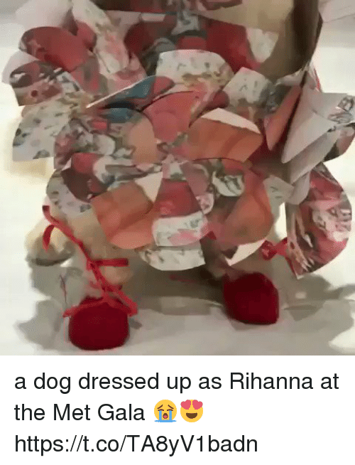Funny, Rihanna, and Met Gala: a dog dressed up as Rihanna at the Met Gala 😭😍  https://t.co/TA8yV1badn