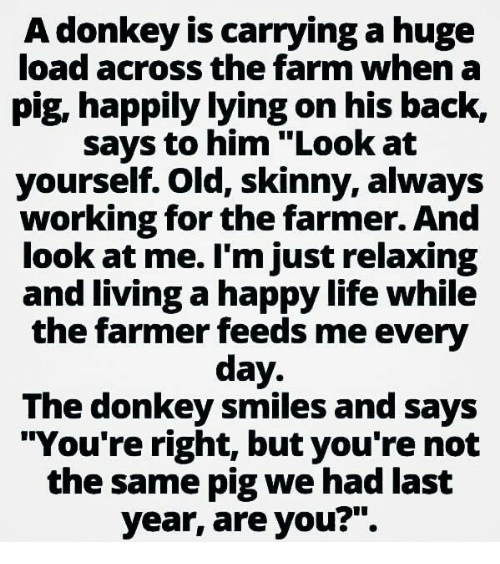 """Skinny: A donkey is carrying a huge  load across the farm when a  pig, happily lying on his back,  says to him """"Look at  yourself. old, skinny, always  working for the farmer. And  look at me. I'm just relaxing  and living a happylife while  the farmer feeds me every  day  The donkey smiles and says  """"You're right, but you're not  the same pig we had last  year, are you?""""."""