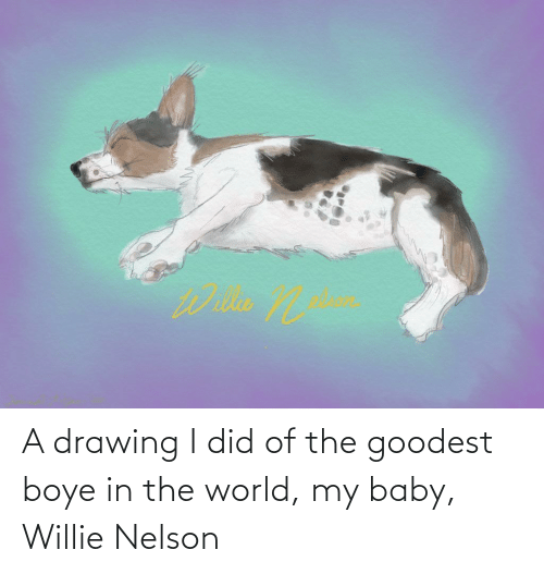 willie: A drawing I did of the goodest boye in the world, my baby, Willie Nelson