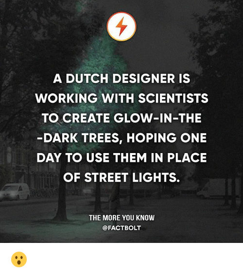 Dutches: A DUTCH DESIGNER IS  WORKING WITH SCIENTISTS  TO CREATE GLOW-IN-THE  DARK TREES, HOPING ONE  DAY TO USE THEM IN PLACE  OF STREET LIGHTS.  THE MORE YOU KNOW  @FACTBOLT 😮