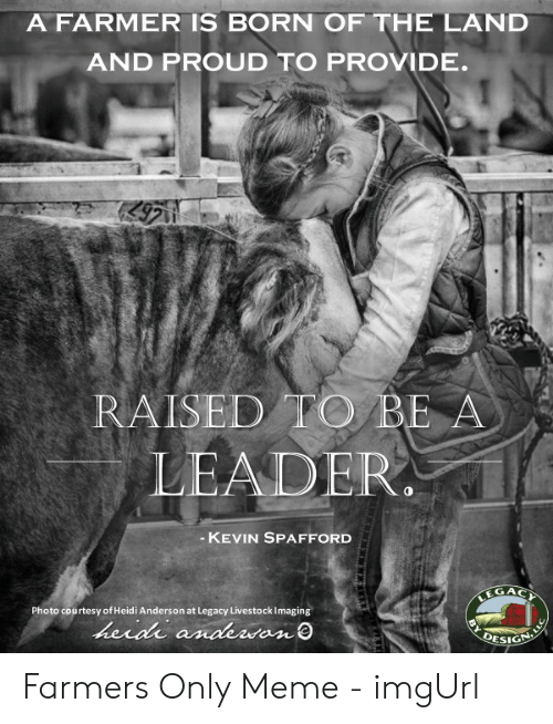 Farmersonly Com Meme: A FARMER IS BORN OF THE LAND  AND PROUD TO PROVIDE.  9711  RAISED TO BE A  LEADER.  -KEVIN SPAFFORD  EGACY  Photo courtesy of Heidi Anderson at Legacy Livestock Imaging  herdi andewan  DESIGN Farmers Only Meme - imgUrl