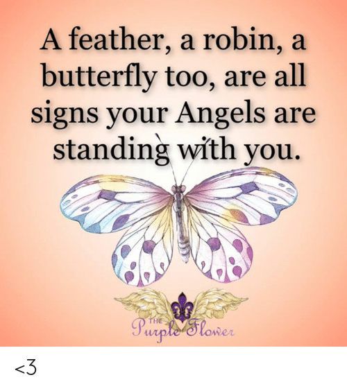 Butterfly: A feather, a robin, a  butterfly too, are all  signs your Angels are  standing with you  THE  Purple 'Slower <3