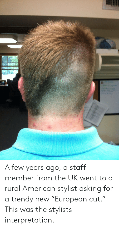 """Trendy: A few years ago, a staff member from the UK went to a rural American stylist asking for a trendy new """"European cut."""" This was the stylists interpretation."""