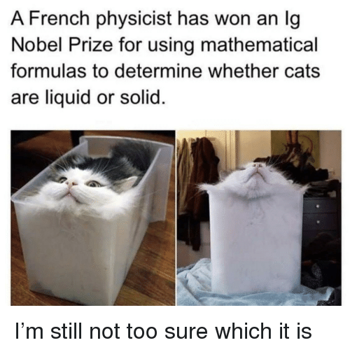Nobel Prize: A French physicist has won an Ig  Nobel Prize for using mathematical  formulas to determine whether cats  are liquid or solid I'm still not too sure which it is