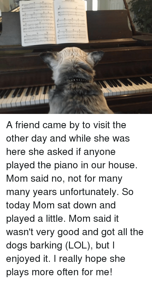 Memes, Moms, and House: A friend came by to visit the other day and while she was here she asked if anyone played the piano in our house. Mom said no, not for many many years unfortunately.  So today Mom sat down and played a little. Mom said it wasn't very good and got all the dogs barking (LOL), but I enjoyed it.  I really hope she plays more often for me!