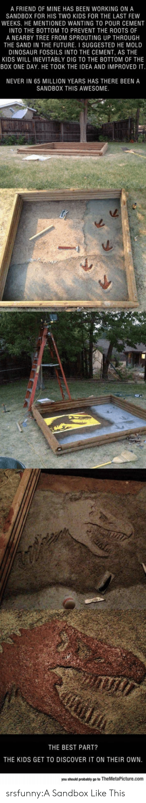 inevitably: A FRIEND OF MINE HAS BEEN WORKING ON A  SANDBOX FOR HIS TWO KIDS FOR THE LAST FEW  WEEKS. HE MENTIONED WANTING TO POUR CEMENT  INTO THE BOTTOM TO PREVENT THE ROOTS OF  A NEARBY TREE FROM SPROUTING UP THROUGH  THE SAND IN THE FUTURE. I SUGGESTED HE MOLD  DINOSAUR FOSSILS INTO THE CEMENT, AS THE  KIDS WILL INEVITABLY DIG TO THE BOTTOM OF THE  BOX ONE DAY. HE TOOK THE IDEA AND IMPROVED IT  NEVER IN 65 MILLION YEARS HAS THERE BEEN A  SANDBOX THIS AWESOME  THE BEST PART?  THE KIDS GET TO DISCOVER IT ON THEIR OWN  you should probably go to TheMetaPicture.com srsfunny:A Sandbox Like This