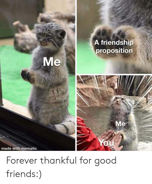 proposition: A friendship  proposition  Me  Me  You  made with mematic Forever thankful for good friends:)