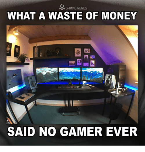 Meme, Memes, and Money: A GAMING MEMES  WHAT A WASTE OF MONEY  SAID NO GAMER EVER
