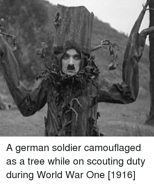 scouting: A german soldier camouflaged as a tree while on scouting duty during World War One [1916]