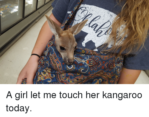 Girl, Today, and Her: A girl let me touch her kangaroo today.