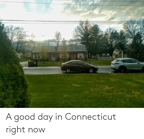 good day: A good day in Connecticut right now