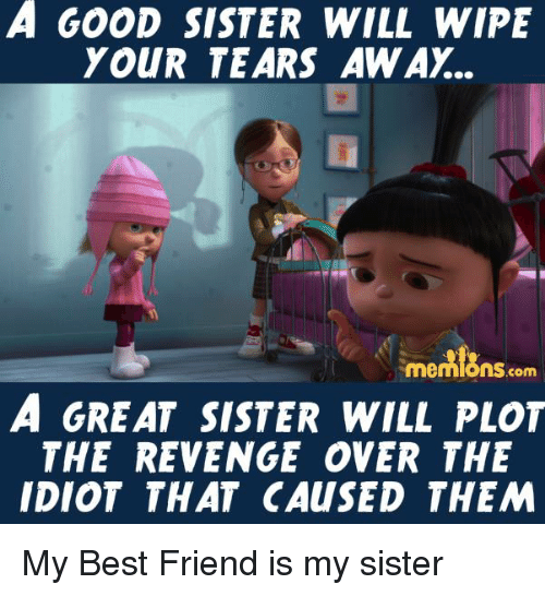 Funny Memes For Your Sister : Funny revenge memes of on sizzle s