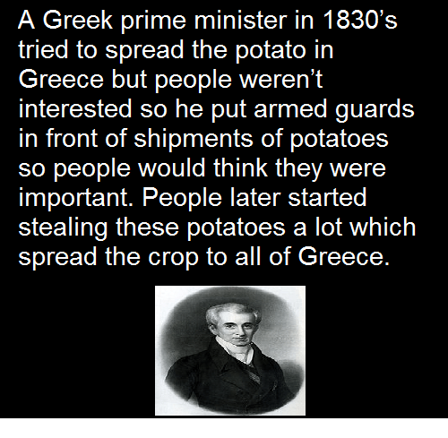 Memes, 🤖, and Lots: A Greek prime minister in 1830's  tried to spread the potato in  Greece but people weren't  interested so he put armed guards  in front of shipments of potatoes  so people would think they were  important. People later started  stealing these potatoes a lot which  spread the crop to all of Greece.