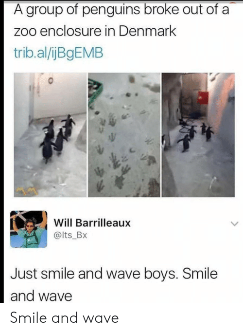 Denmark: A group of penguins broke out of a  zoo enclosure in Denmark  trib.al/ijBgEMB  Will Barrilleaux  @lts_Bx  Just smile and wave boys. Smile  and wave Smile and wave