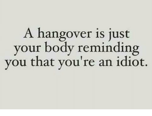 Memes, Hangover, and 🤖: A hangover is just  your body reminding  you that you're an idiot.