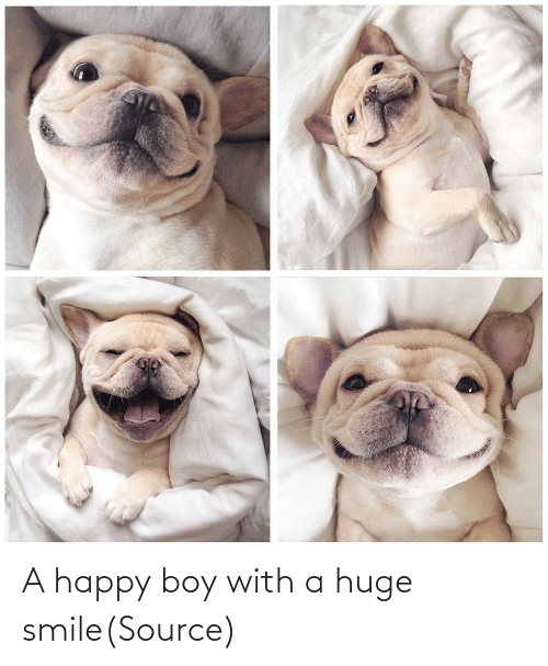 boy: A happy boy with a huge smile(Source)