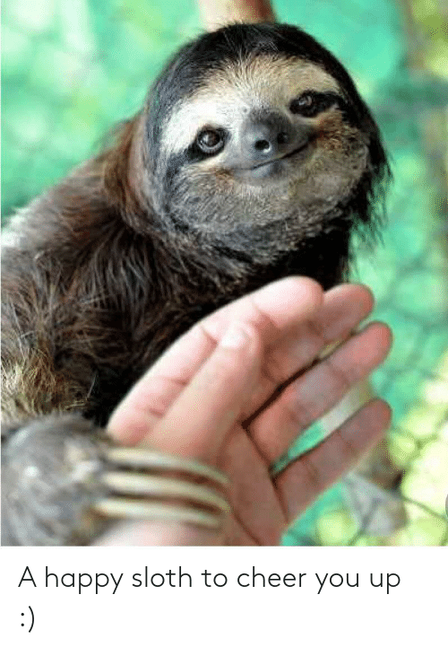 You Up: A happy sloth to cheer you up :)