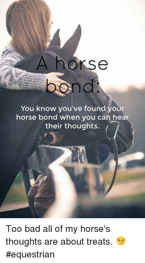 Horses, Memes, and Horse: A horse  You know you've found you  horse bond when you can he  their thoughts. Too bad all of my horse's thoughts are about treats. 😏 #equestrian