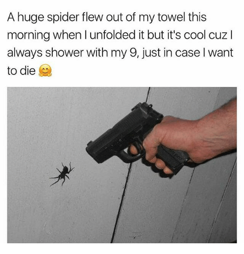 huge spiders: A huge spider flew out of my towel this  morning when I unfolded it but it's cool cuzl  always shower with my 9, just in case l want  to die