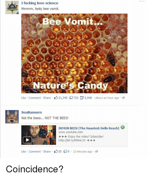 25 best memes about not the bees not the bees memes candy fucking and lol a i fucking so love science mmmm tasty bee sciox Choice Image
