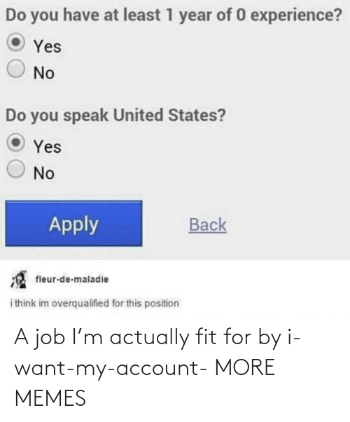 I Want: A job I'm actually fit for by i-want-my-account- MORE MEMES