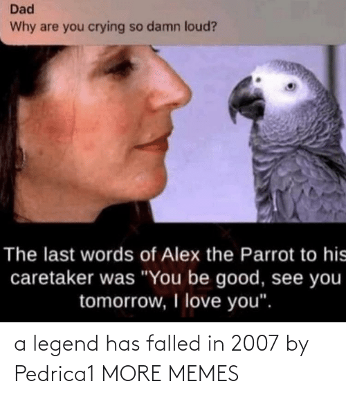 legend: a legend has falled in 2007 by Pedrica1 MORE MEMES