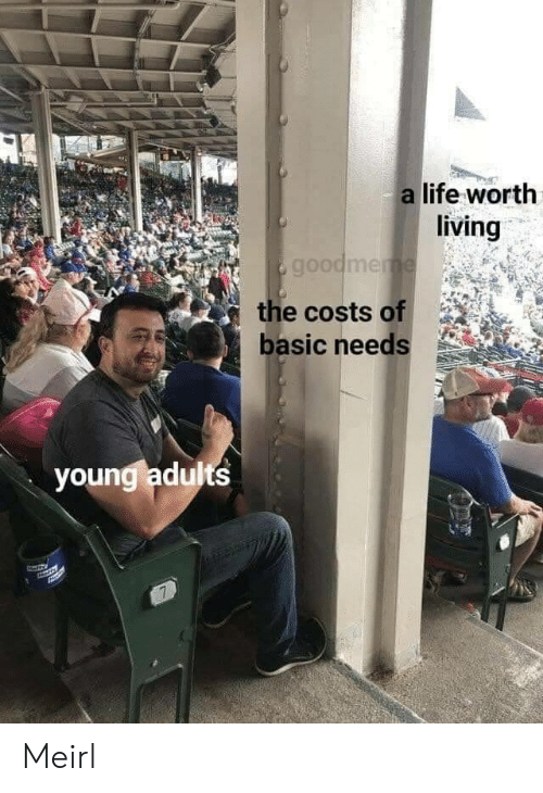 Costs: a life worth  living  goodmeme  the costs of  basic needs  youngladults  7 Meirl