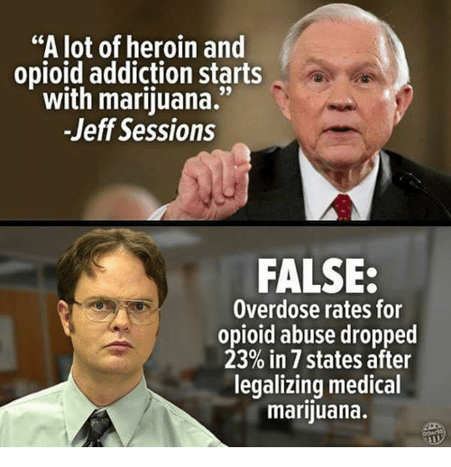 """jeff sessions: """"A lot of heroin and  opioid addiction starts  with marijuana.""""  -Jeff Sessions  FALSE:  Overdose rates for  opioid abuse dropped  23% in 7 states after  legalizing medical  marijuana."""