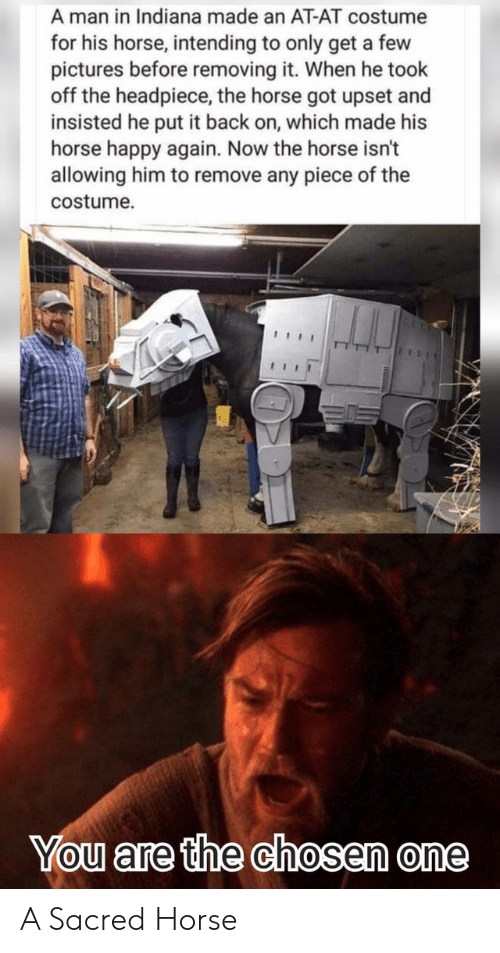 sacred: A man in Indiana made an AT-AT costume  for his horse, intending to only get a few  pictures before removing it. When he took  off the headpiece, the horse got upset and  insisted he put it back on, which made his  horse happy again. Now the horse isn't  allowing him to remove any piece of the  costume  You are the chosen one A Sacred Horse