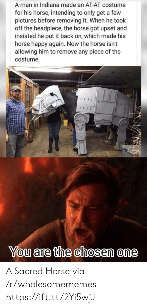 AT-AT: A man in Indiana made an AT-AT costume  for his horse, intending to only get a few  pictures before removing it. When he took  off the headpiece, the horse got upset and  insisted he put it back on, which made his  horse happy again. Now the horse isn't  allowing him to remove any piece of the  costume  You are the chosen one A Sacred Horse via /r/wholesomememes https://ift.tt/2Yi5wjJ
