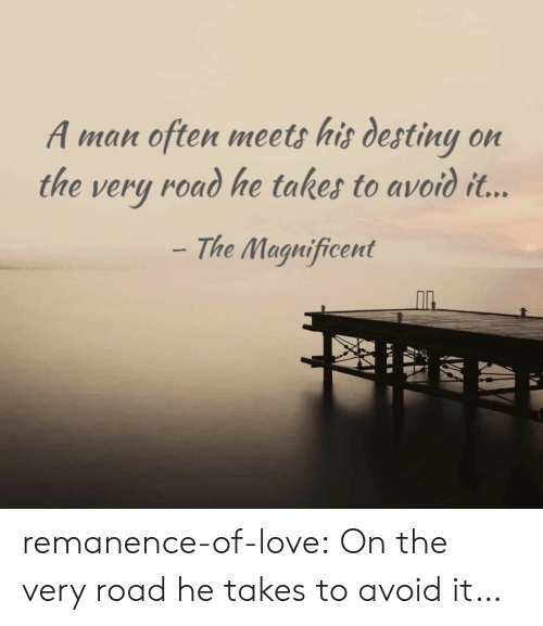Magnificent: A man often meets his destiny on  the very road he takes to avoid it...  The Magnificent remanence-of-love:  On the very road he takes to avoid it…