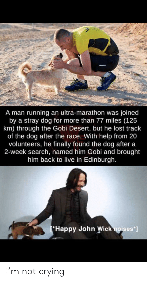 marathon: A man running an ultra-marathon was joined  by a stray dog for more than 77 miles (125  km) through the Gobi Desert, but he lost track  of the dog after the race. With help from 20  volunteers, he finally found the dog after a  2-week search, named him Gobi and brought  him back to live in Edinburgh.  Happy John Wick noises*] I'm not crying