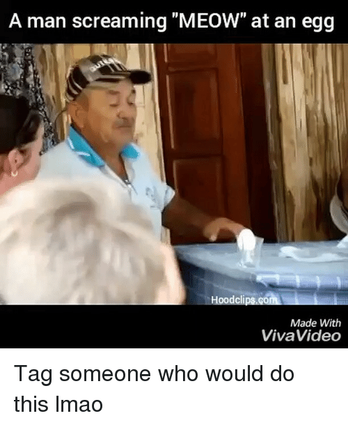 """Funny: A man screaming """"MEOW"""" at an egg  Hoodclips.Go  Made With  Viva Video Tag someone who would do this lmao"""