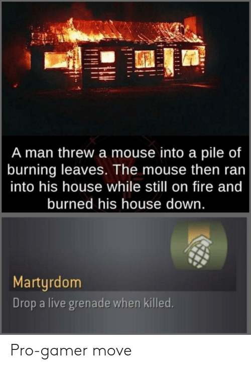 Mouse: A man threw a mouse into a pile of  burning leaves. The mouse then ran  into his house while still on fire and  burned his house down.  Martyrdom  Drop a live grenade when killed. Pro-gamer move