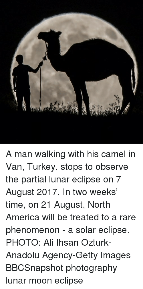 Mooned: A man walking with his camel in Van, Turkey, stops to observe the partial lunar eclipse on 7 August 2017. In two weeks' time, on 21 August, North America will be treated to a rare phenomenon - a solar eclipse. PHOTO: Ali Ihsan Ozturk-Anadolu Agency-Getty Images BBCSnapshot photography lunar moon eclipse
