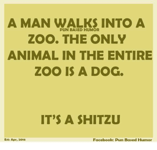 Facebook Pun: A MAN WALKS INTO A  PUN BASED HUMOR  ZOO. THE ONLY  ANIMAL IN THE ENTIRE  ZOO IS A DOG  IT'S A SHITZU  Facebook: pun Based Humor  Est: Apr, 2016
