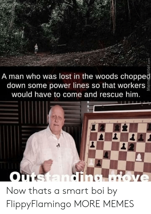 Power Lines: A man who was lost in the woods choppeğ  down some power lines so that workers  would have to come and rescue him.  Outstandina move Now thats a smart boi by FlippyFlamingo MORE MEMES
