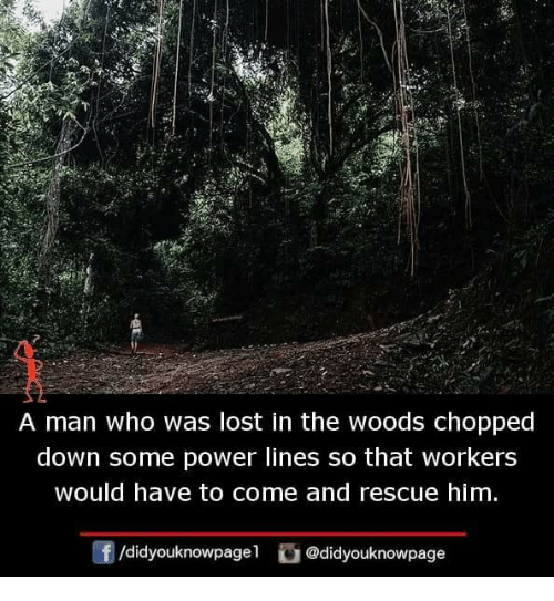 Power Lines: A man who was lost in the woods chopped  down some power lines so that workers  would have to come and rescue him  f/didyouknowpagel@didyouknowpage