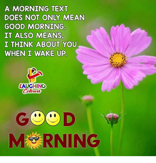 it-also-means: A MORNING TEXT  DOES NOT ONLY MEAN  GOOD MORNING  IT ALSO MEANS  I THINK ABOUT YOU  WHEN I WAKE UP  LAUGHING  G D  MRNING