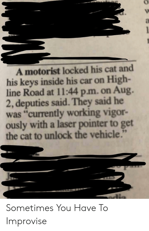 """vehicle: A motorist locked his cat and  his keys inside his car on High-  line Road at 11:44 p.m. on Aug.  2, deputies said. They said he  was """"currently working vigor-  ously with a laser pointer to get  the cat to unlock the vehicle.""""  edia Sometimes You Have To Improvise"""